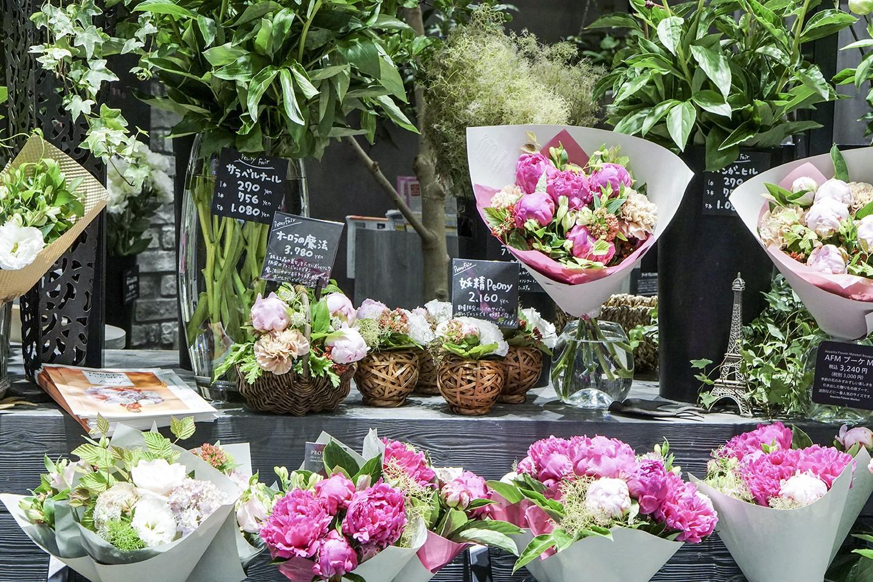 Aoyama Flower Market - Throughout Japan